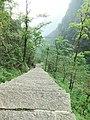 下松谷庵的路 - Route Desends to Songgu Nunnery - 2010.05 - panoramio.jpg