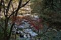 昇仙峡 - panoramio (54).jpg