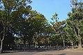 東京都上野恩賜公園 - panoramio (3).jpg