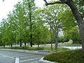 渡辺翁記念会館 - panoramio (2).jpg