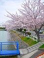 豊明市 - panoramio - gundam2345 (3).jpg