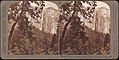 -Group of 23 Stereograph Views of Yosemite Valley Housed in Original Publisher's Box- MET DP75330.jpg