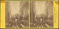-Group of 5 Stereograph Views of Westminster Abbey, London, England- MET DP73341.jpg