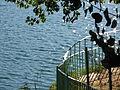 000565 - Lagunas de Ruidera (4313407486).jpg