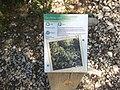 13960 Sausset-les-Pins, France - panoramio (11).jpg