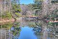 15-07-123, azalea bowl - panoramio.jpg