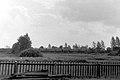 1980s-Bialowieza-pociag-1.jpg