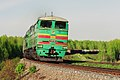 2ТЭ10М-0915, Russia, Moscow region, Ozherelye - Pchelovodnoye stretch (Trainpix 151833).jpg