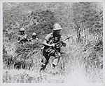 2.3 Marines ambushed by Viet Cong.jpg