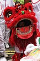 2007-02-18 -- United Kingdom -- England -- London -- Chinese New Year -- Dragon -- Child 4889217711.jpg