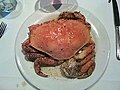 2009-365-255 Crab Heaven (3915901602).jpg