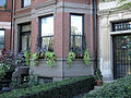 2011 windowbox CommonwealthAve BackBay BostonMA September IMG 3749.jpg