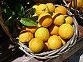 20120628 panier-oranges.jpg