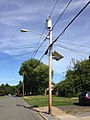 2014-08-29 15 43 11 Utility pole and street lamp along Dunmore Avenue in Ewing, New Jersey.JPG
