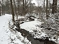 2016-02-15 08 41 38 View west down a snowy Cain Branch of Cub Run in the Armfield Farm section of Chantilly, Fairfax County, Virginia.jpg