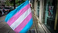 2016.05.21 Capital TransPride Washington DC USA 0388 (26575192064).jpg