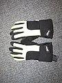 2018-01-01 (221) Gloves.jpg