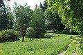 20180528180DR Hermsdorf (Erzgebirge) Wilde Weißeritz-Aue.jpg