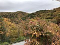 2019-10-26 12 52 19 View east across Salthouse Hollow on the west side of Shenandoah Mountain from the Highland Turnpike (U.S. Route 250) in Highland County, Virginia.jpg
