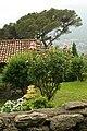 23822 Bellano LC, Italy - panoramio (2).jpg
