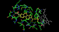 24-cholesterol hydroxylase active site with bound cholesterol 3-sulfate.png