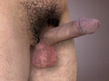 3D Human Penis Erected.png