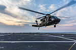 42nd CAB Aviators train on USS New Orleans 140123-Z-AR422-412.jpg