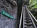 6 Hohe Leitern Bärenschützklamm.jpg