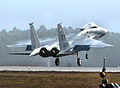 95th Fighter Squadron - F-15 - Tyndall AFB.jpg