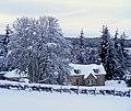 A Cottage by Glenernie - geograph.org.uk - 1155452.jpg
