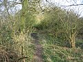 A clear footpath - geograph.org.uk - 1239692.jpg