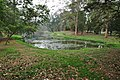 Acharya Jagadish Chandra Bose Indian Botanic Garden - Howrah 2011-02-20 1650.JPG