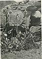 Adventure, sport and travel on the Tibetan steppes (1911) (14596976888).jpg