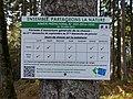 Affiche Période ouverture de la chasse Les Voirons zoom.jpg