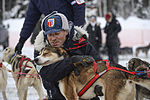 Air Force officer trains for Iditarod 150309-F-YW474-072.jpg