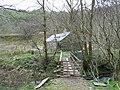 Alderlea, Torrisdale Glen. - geograph.org.uk - 551533.jpg
