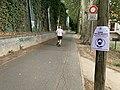 Allée Moulin Corbeaux - Saint-Maurice (FR94) - 2020-08-24 - 1.jpg
