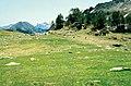 Altos Pirineos 1981 40.jpg