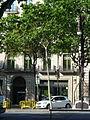 Alzina del passeig de Gràcia P1450019.JPG