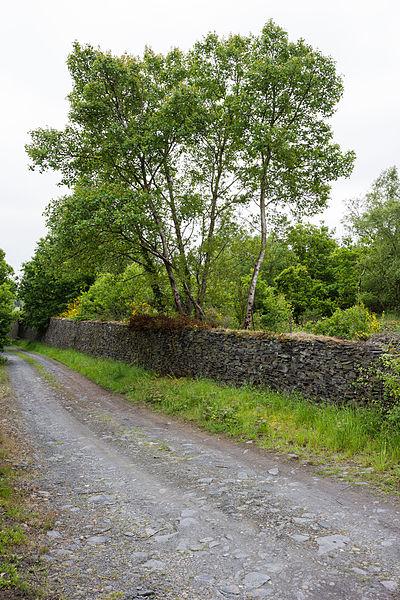 Français:  Mur en schiste ardoisier sur le site de l'ancienne ardoisière de la rivière, à Saint-Saturnin-du-Limet (France).