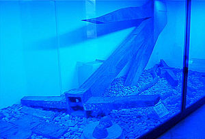 Mahdia Governorate - Ship's anchor of the Mahdia shipwreck, many of the artefacts of which are in the Bardo National Museum in Tunis.