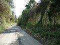 Andover - Mitcheldever Road - geograph.org.uk - 1813813.jpg