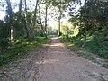 Anella verda - panoramio.jpg