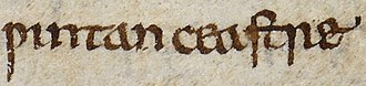 Winchester - A mention of Wintan-ceastre in the Anglo-Saxon Chronicle