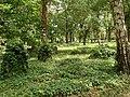 Annenfriedhof21.jpg