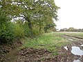 Another muddy field - geograph.org.uk - 1038551.jpg