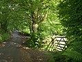 Approaching Harford Bridge - geograph.org.uk - 1355701.jpg