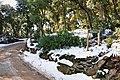 Arenys de munt-montnegre nevado-2010 (2).JPG