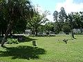 Argyle Park.jpg