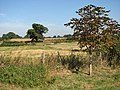 Ashby - the site of the deserted village - geograph.org.uk - 1509593.jpg
